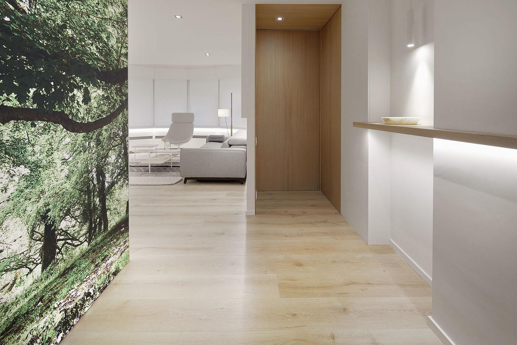 Apartamento Usandizaga by Estudio Arquea - Iñaki Caperochipi - Fotografía
